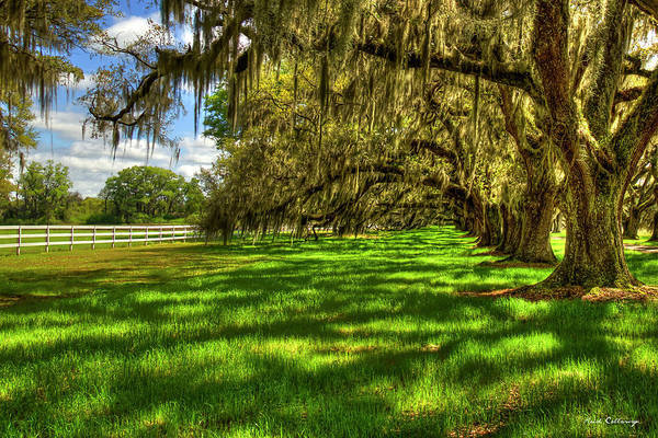 Photograph - Under The Shadows Tomotley Plantation Live Oaks South Carolina Art by Reid Callaway