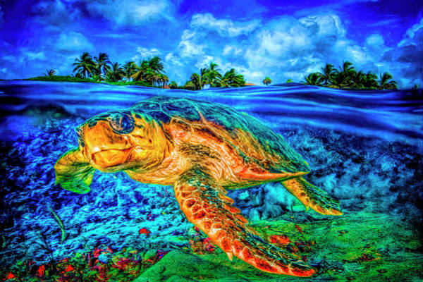 Photograph - Under The Waves In Bright Colors by Debra and Dave Vanderlaan