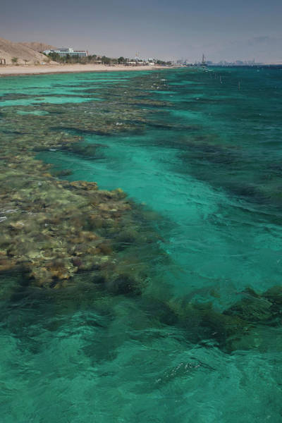 Underwater Photograph - Underwater Marine Park, Red Sea, Eliat by Danita Delimont
