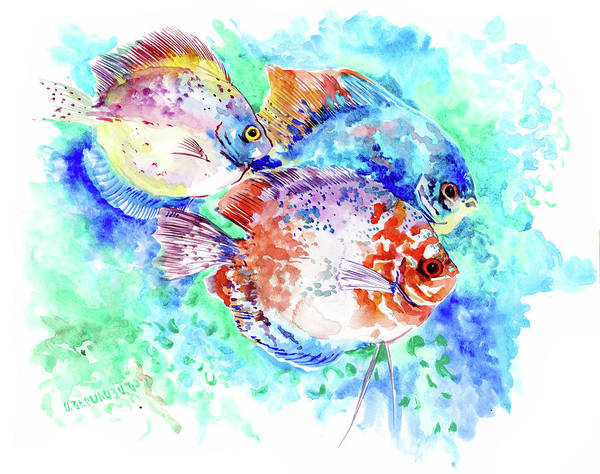 Wall Art - Painting - Underwater Tropical Fish Art, Tropical Colors, Amazon Discus Fish by Suren Nersisyan