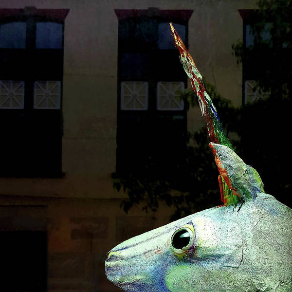 Photograph - Unicorn In The Window by Tom Romeo