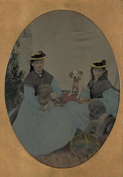 Painting - Unidentified Two Girls And Three Dogs Ca. 1870 by Celestial Images