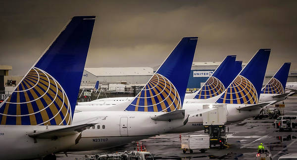 Photograph - United Tails 02 by Philip Rispin