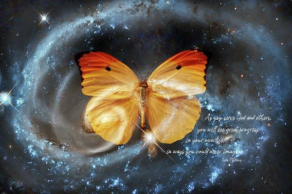 Digital Art - Universal Butterfly by Ramona Murdock
