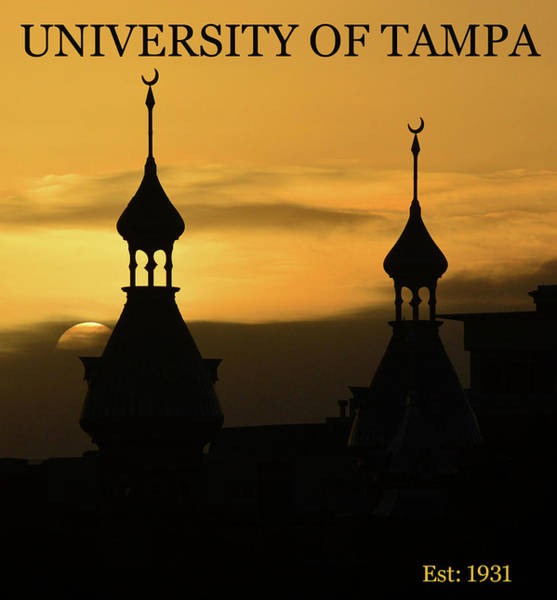 Wall Art - Photograph - University Of Tampa Poster A by David Lee Thompson