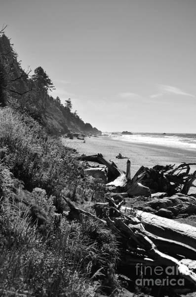 Photograph - Untouched by Jeni Gray