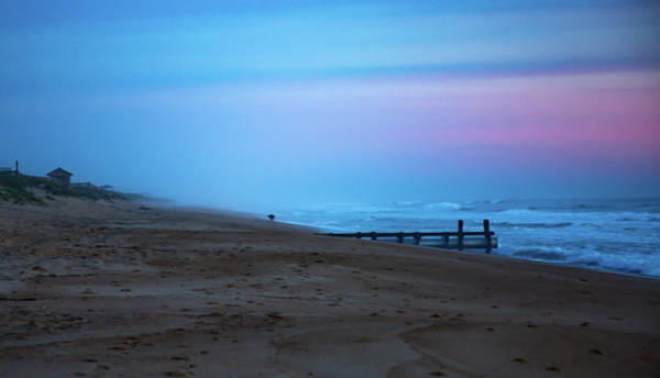 Photograph - Up Before Sunrise by Lora J Wilson