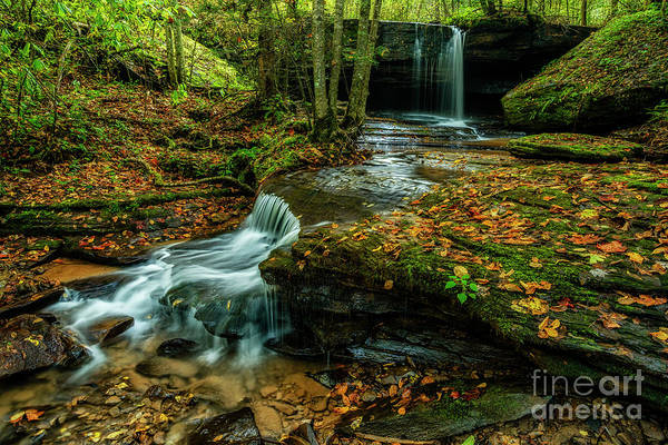 Photograph - Upper Elk River Tributary Waterfall  by Thomas R Fletcher