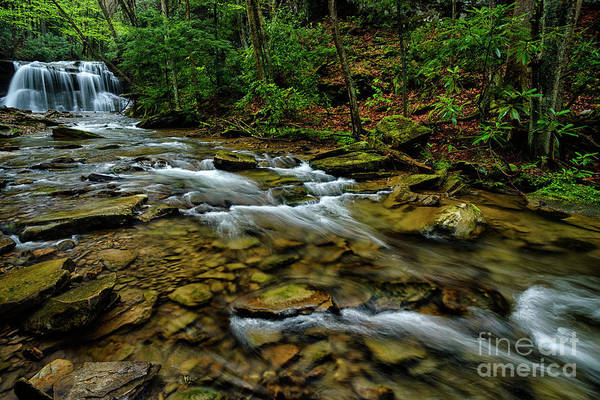 Photograph - Upper Falls In Spring by Thomas R Fletcher