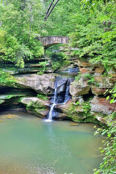 Photograph - Upper Falls Old Man's Gorge Vertical by Lisa Wooten