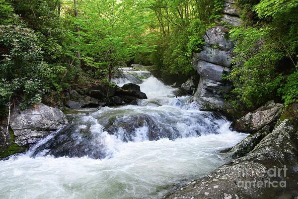 Photograph - Upper Lynn Camp Falls by Phil Perkins