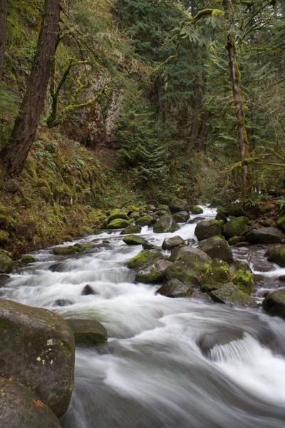 Photograph - Upper Multnomah Flow by Dylan Punke