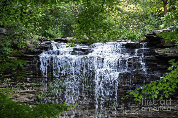 Photograph - Upper Piney Falls 1 by Phil Perkins