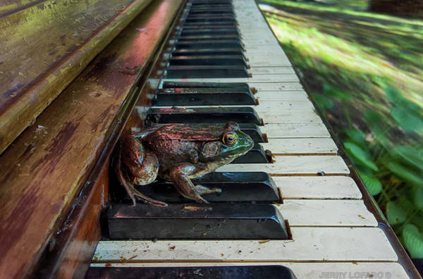 Piano Photograph - Upright Amphibian by Jerry LoFaro
