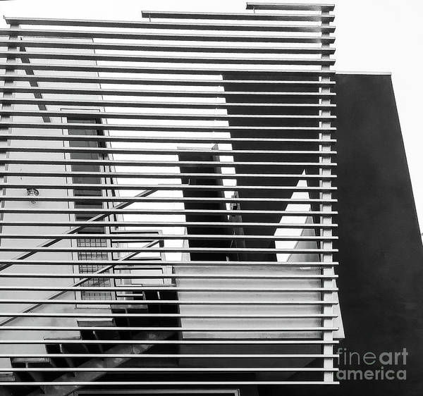 Photograph - Urban Cage by Fei A