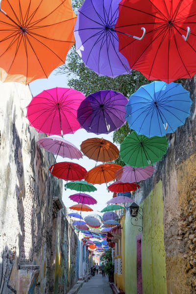 Photograph - Urban Umbrellas by Renee Sullivan