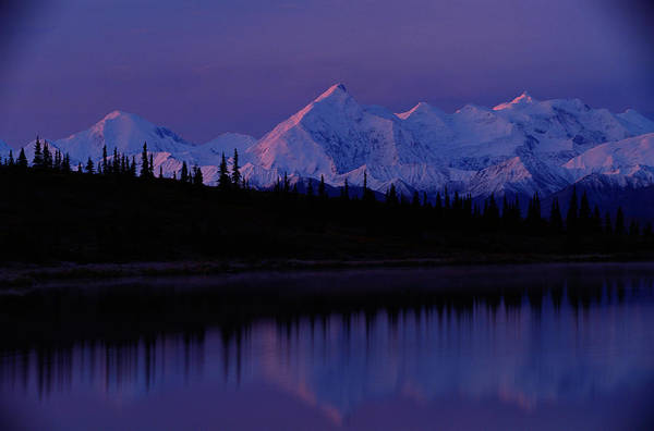 Alaska Photograph - Usa, Alaska, Denali National Park by Art Wolfe