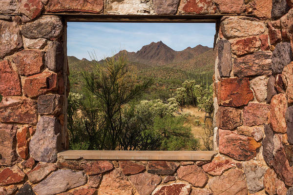 Wall Art - Photograph - Usa, Arizona, Tucson Mountain Trail by Peter Hawkins