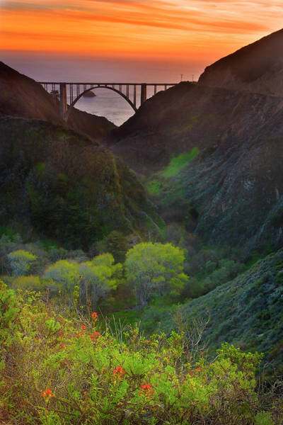 Vertical Landscape Photograph - Usa, California, Big Sur, Bixby Bridge by Don Smith