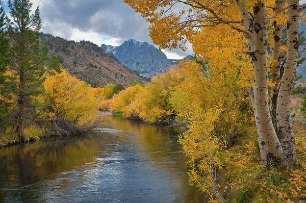 Birch River Photograph - Usa, California, River Through Eastern by Gary Weathers