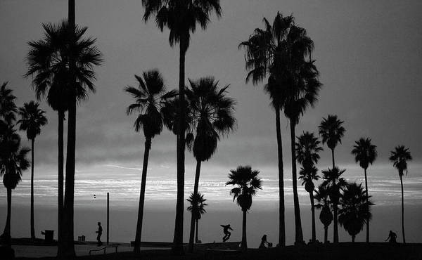 Small Photograph - Usa, California, Venice, Venice Beach by John Livzey
