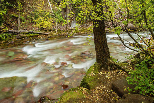 Wall Art - Photograph - Usa, Colorado Autumn On Castle Creek by Jaynes Gallery