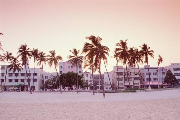 Palm Tree Photograph - Usa, Florida, Miami, Ocean Boulevard by Nicolas Russell