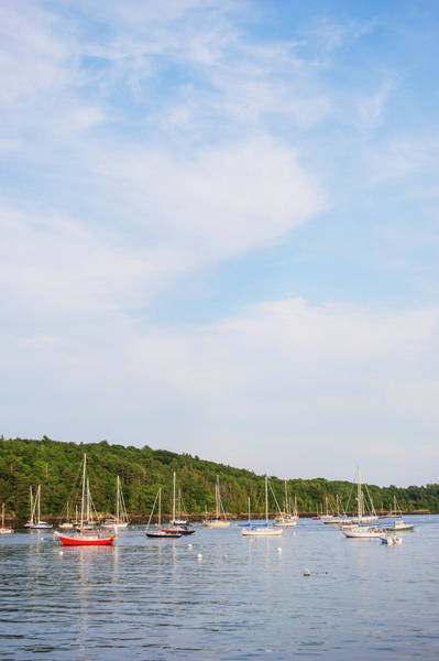 Camden Photograph - Usa, Maine, Camden, Yachts Moored In by Daniel Grill