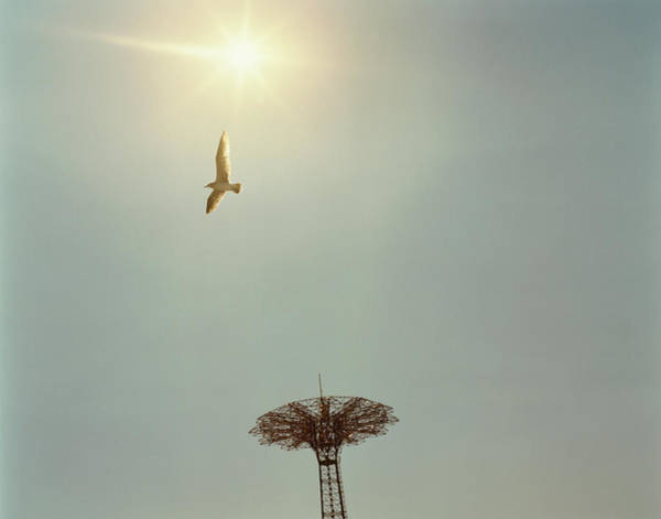 Usa, New York, Coney Island Amusement Art Print