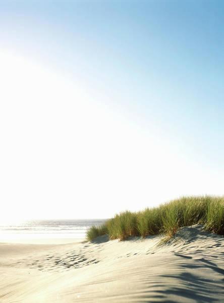 Oregon Dunes Photograph - Usa, Oregon, Manzanita Beach, Tall by Todd Pearson