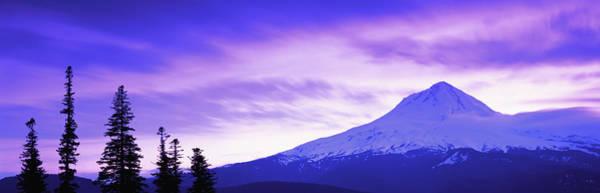 Wall Art - Photograph - Usa, Oregon, Mount Hood, Tree Tops In by Travelpix Ltd