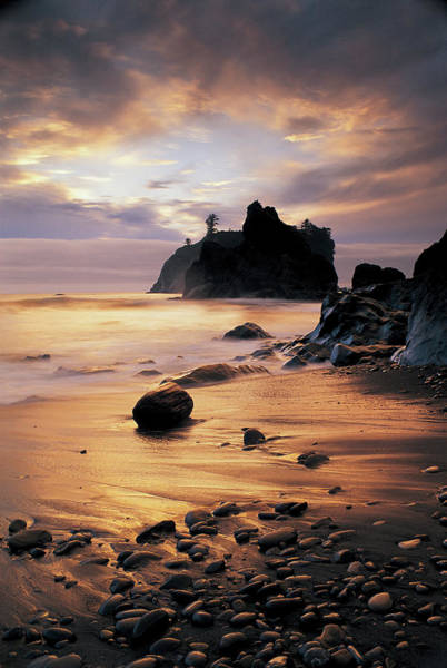 Wall Art - Photograph - Usa, Washington State, Olympic National by Peter Adams