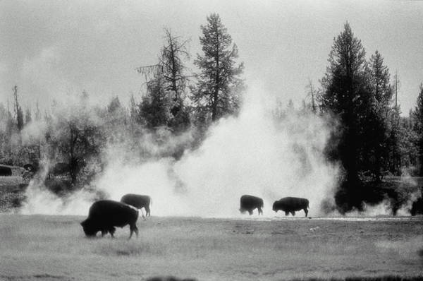 Firehole River Wall Art - Photograph - Usa, Wyoming, Yellowstone National by Brian Bailey