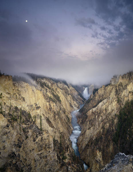 Yellowstone Canyon Photograph - Usa, Wyoming, Yellowstone Np, Grand by Ryan/beyer