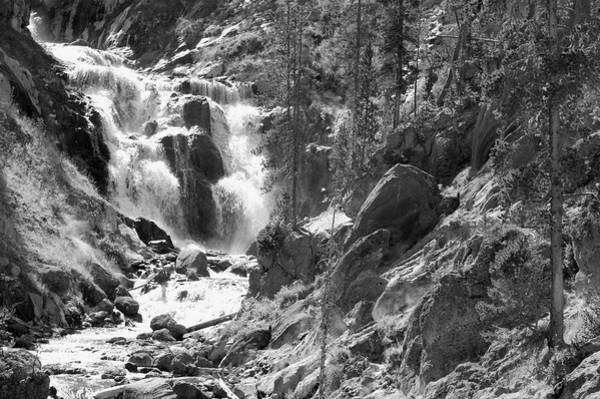 Wall Art - Photograph - Usa, Wyoming, Yellowstone Np, Mystic by Guy Crittenden
