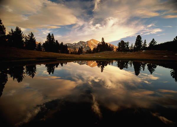 Tioga Photograph - Usa,california,yosemite National by Marc Muench