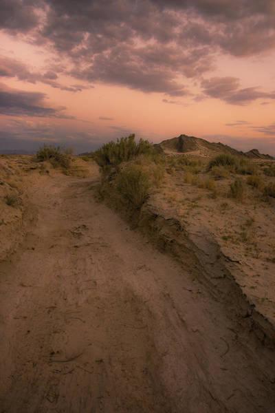 Photograph - Utah Desert by Roy Nelson
