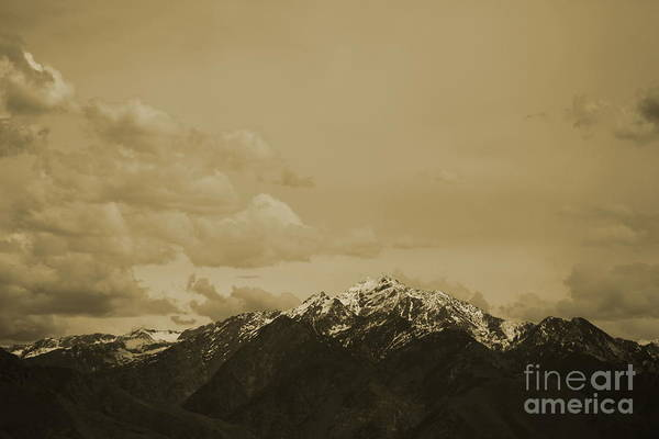Photograph - Utah Mountain In Sepia by Colleen Cornelius