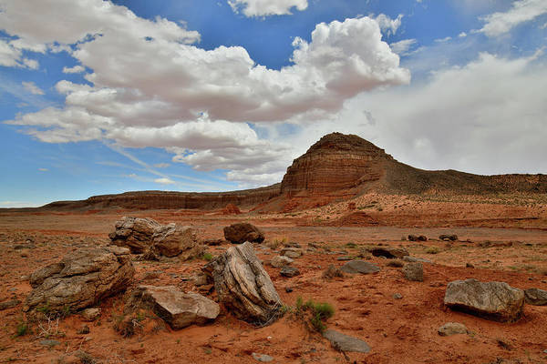 Photograph - Utah Scenic Byway 191 Red Rock Desert by Ray Mathis
