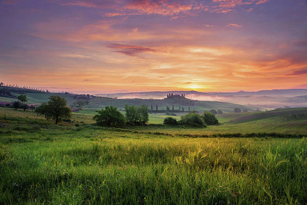 Wall Art - Photograph - Val D'orcia  by Yuri San