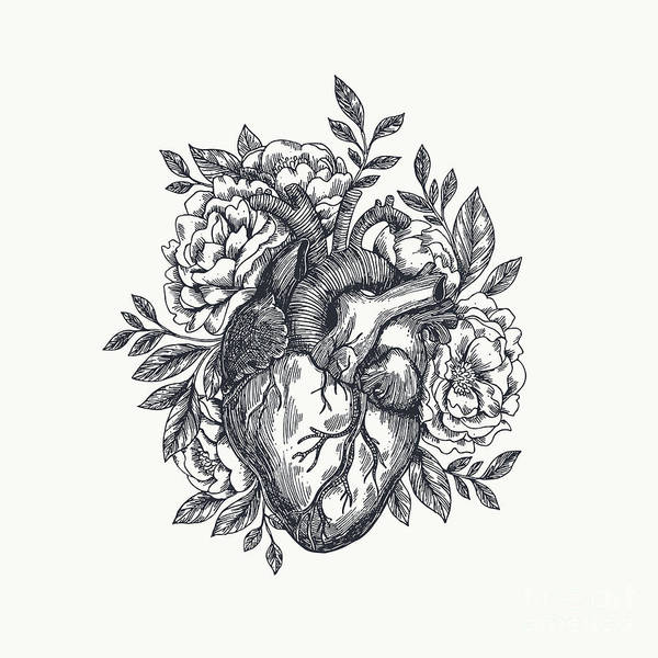 Engraved Digital Art - Valentines Day Card. Anatomical Heart by Adehoidar