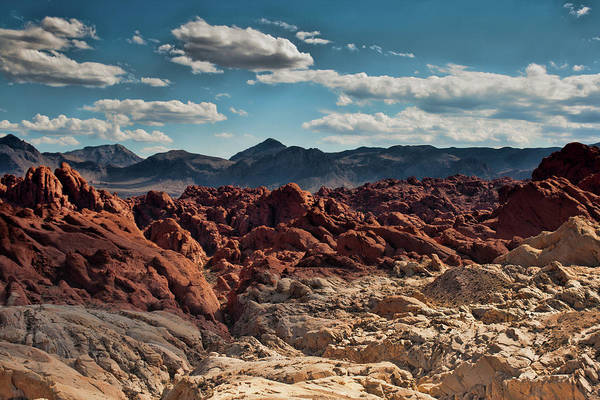 Photograph - Valley Of Fire Rugged Colors by Kristia Adams