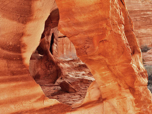 Photograph - Valley Of Fire Sandstone by Leland D Howard