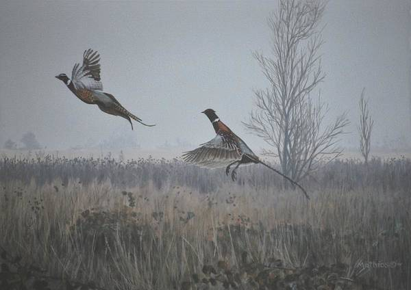 Painting - Valley Pheasants by Peter Mathios