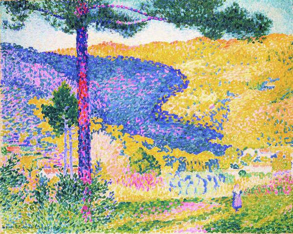 Wall Art - Painting - Valley With Fir, Shade On The Mountain - Digital Remastered Edition by Henri Edmond Cross