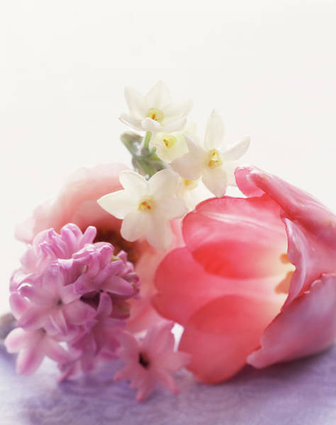 Out Of Focus Wall Art - Photograph - Variety Of Colorful Flowers In Bouquet by Gentl And Hyers