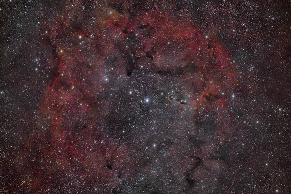 Wall Art - Photograph - Vdb 142, The Elephant Trunk Nebula by Reinhold Wittich
