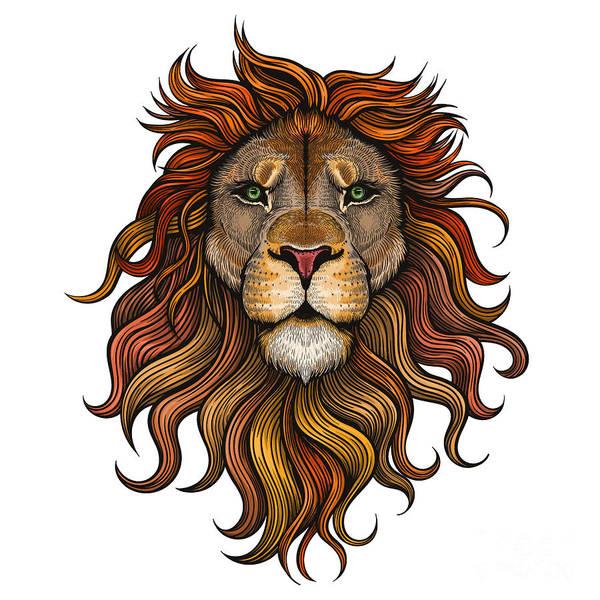 Wall Art - Digital Art - Vector Color Lion Illustration by Julia Waller