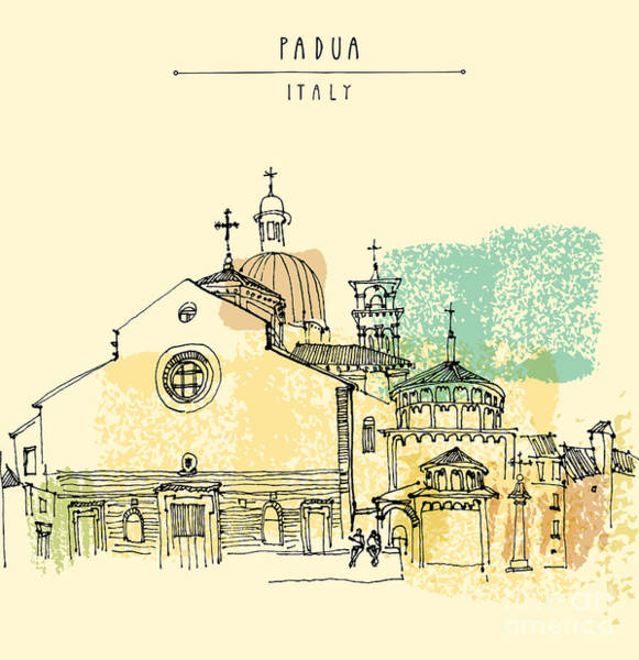 Wall Art - Digital Art - Vector Illustration Of Padua Cathedral by Babayuka
