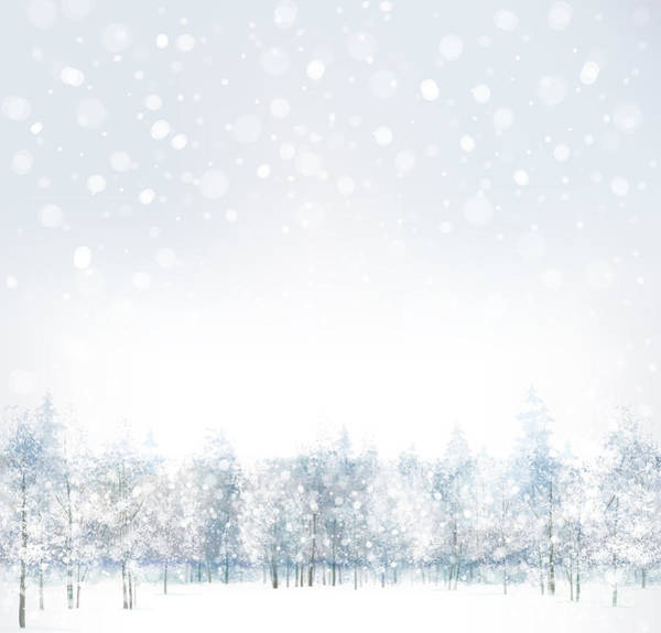 Wall Art - Digital Art - Vector Of Winter Scene With Forest by Rvika